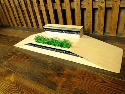 ФБР - деревянные фигуры для фингербординга Фанбокс grass + бокс