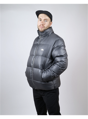 Куртка Anteater Downjacket-grey